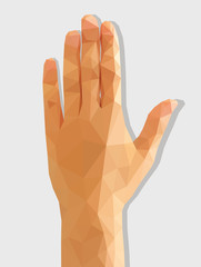 Female left hand rear polygonal low-poly isolated