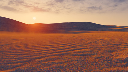 Sandy desert at sunset closeup
