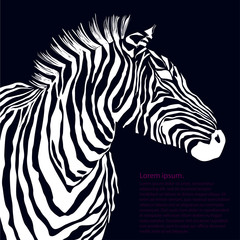Animal white illustration silhouette zebra. Vector