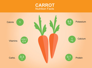 carrot nutrition facts, carrot with information, carrot vector