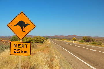 Printed kitchen splashbacks Australia Kangaroos on the road