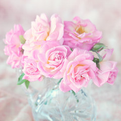 Beautiful fresh pink roses  on a light background.