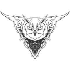 Owl head illustration