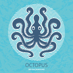 Octopus sea background