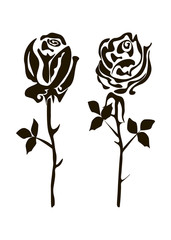 two black and white roses on a white background