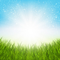 Sunny summer meadow for Your design