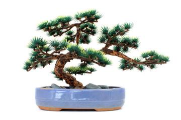 Bonsaï factice / Dummy bonsai