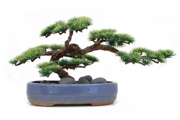 Bonsaï factice / Dummy bonsai