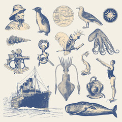 collection of nautical design elements