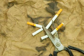 Scissors are cutting a cigarette
