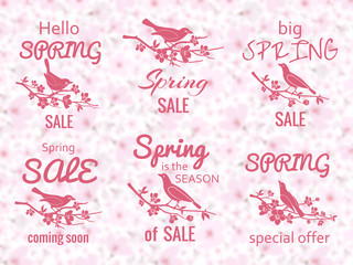 Wall Mural - Spring sale labels with cherry blossom background and birds