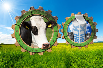 Dairy Industry - Gears in Countryside