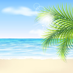 Summer background with palm leaves, beach and sea
