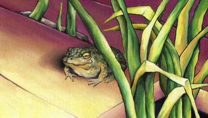 Frog, basking in the sun. Cute frog sitting in the rushes. Oil on canvas.