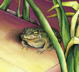 Big toad on the background of the picturesque reeds Green toad, depicted in oil on canvas.