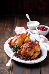 Roasted chicken with wild rice, cilantro and pomegranate garnish, selective focus