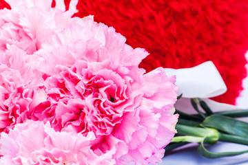 pink carnation floral