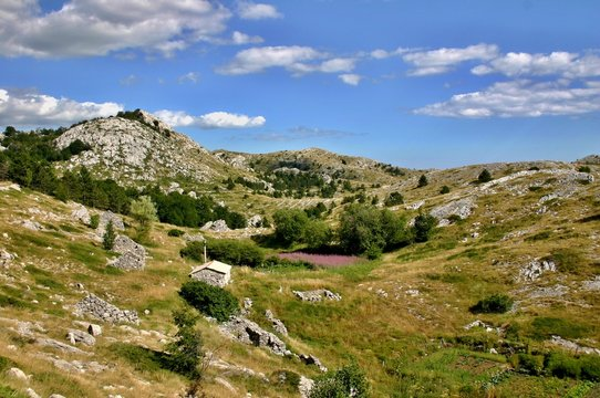 Biokovo landscape