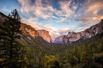 Yosemite National Park Wall mural
