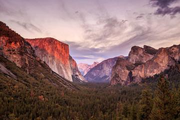Keuken foto achterwand Grijze traf. Yosemite National Park