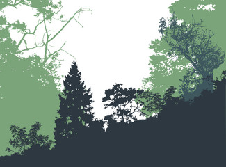 Panoramic forest landscape with silhouettes of trees