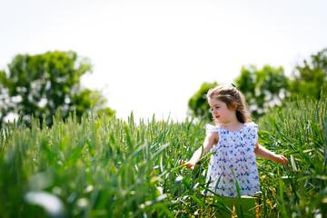Child in a cornfield