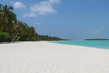 Maldives. A sandy beach and an ocean coast