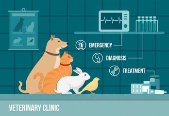 Vet clinic banner