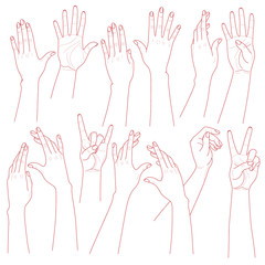 Woman Hands Set