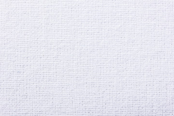 White canvas texture.