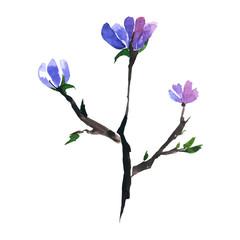 Watercolor brush in blossom