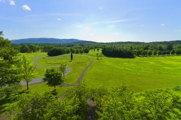 Grassy landscape.
