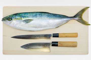 Preparing a Japanese yellowtail in the Japanese style