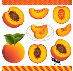 Peach Digital Clipart