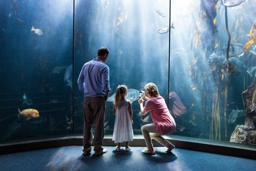 Mother taking photo of fish while daughter and father looking at