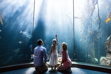 Daughter pointing a fish while her mother and father looking at