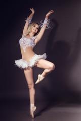 ballerina - white swan