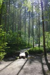 Rettenbachklamm Steiermark