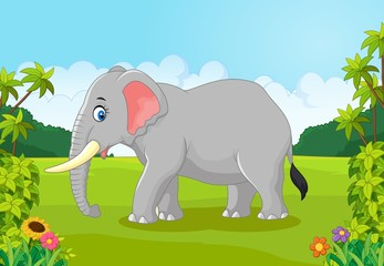 Cartoon animal elephant