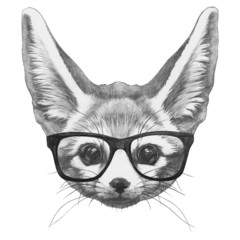 Original drawing of Fennec Fox with glasses. Isolated on white background