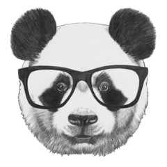 Original drawing of Panda with glasses. Isolated on white background
