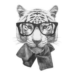 Original drawing of Tiger with glasses. Isolated on white background