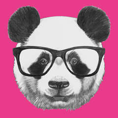 Hand drawn portrait of Panda with glasses. Vector isolated elements.
