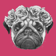 Hand drawn portrait of Pug Dog with floral head wreath. Vector isolated elements.