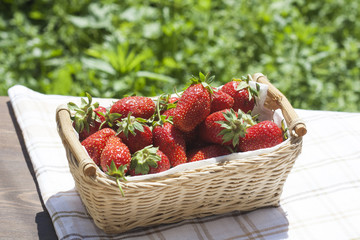 Fresh strawberries with green tails wickerwork basket with white napkin
