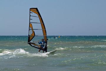Fast  windsurfer