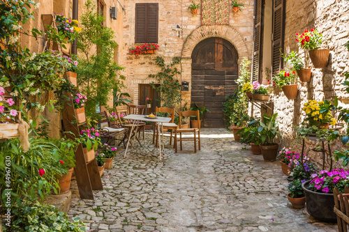 Ingresso romantico casa con mobili da giardino e vasi di - Ingresso giardino ...