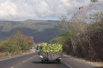 République Dominicaine - république bananière
