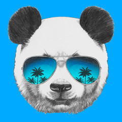 Hand drawn portrait of Panda with mirror sunglasses. Vector isolated elements