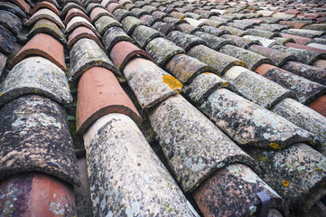 Grungy roof tiles